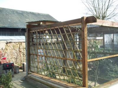 Mon elevage for Oiseaux pour voliere exterieure